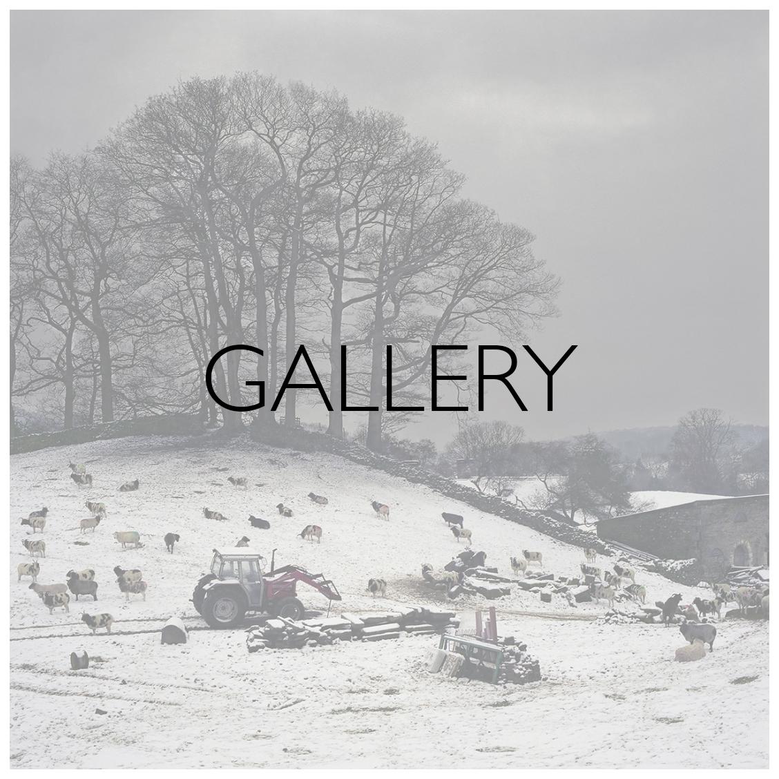 blog_headers_gallery